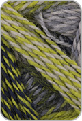 Schoppel Wolle Zauberball Crazy Yarn - Lime/ Greys (# 2204)