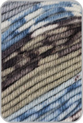 Schoppel Wolle Ambiente Yarn - Sky/ Natural/ Brown (# 1861)