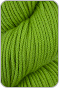 HiKoo Simpliworsted Yarn - Grass Slipper (# 049)