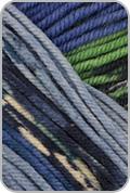 Schoppel Wolle Ambiente Yarn - Blues/ Green (# 2207)