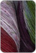 Araucania Huasco Sock Hand Painted Yarn - Galapagos Martin (# 1004)