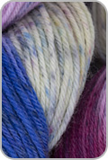 Araucania Huasco Sock Hand Painted Yarn - Inca Jay (# 1002)