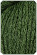 Brown Sheep Prairie Spun DK Yarn - Cyprus Leaves (# 120)