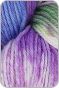 Araucania Huasco Sock Hand Painted Yarn - Santiago (# 1016)