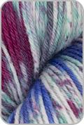 Araucania Huasco Sock Hand Painted Yarn - Costa Verde (# 1015)