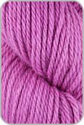 Spud and Chloe Sweater Yarn - Jelly Bean (# 7513)