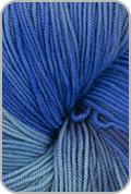Araucania Huasco Yarn - Blues (# 12)