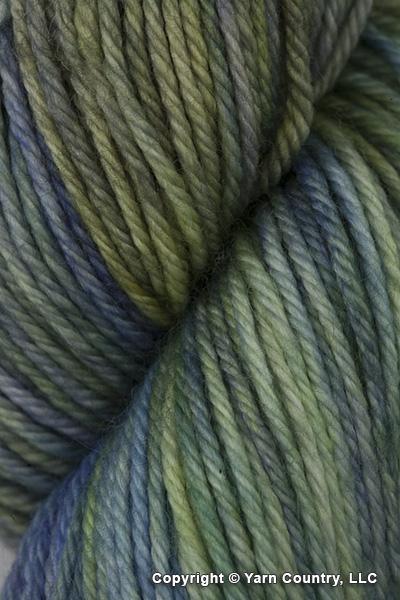 Dream in Color Classy Yarn - Fortune (# 707)